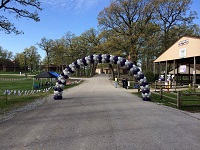 Balloon arch for walk, Crown Point Indiana